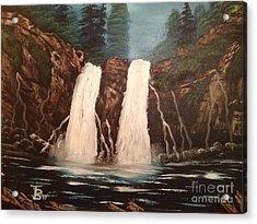 Deep Woods Waterfall Acrylic Print by Tim Blankenship