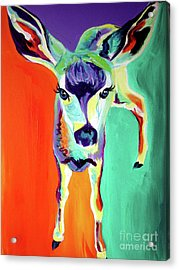 Deer - Fawn Acrylic Print by Alicia VanNoy Call