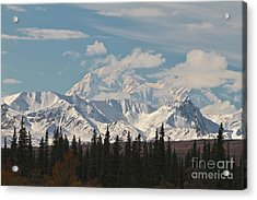 Denali In Broad Pass Acrylic Print by Donna Quante