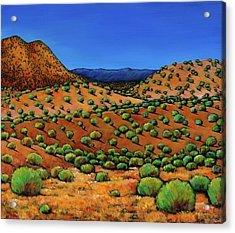 Desert Afternoon Acrylic Print by Johnathan Harris