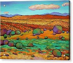 Desert Day Acrylic Print by Johnathan Harris