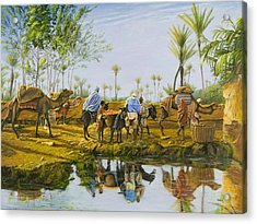 Desert Gold Acrylic Print by Christopher Oakley