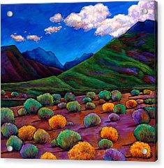 Desert Valley Acrylic Print by Johnathan Harris