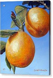 Deux Oranges Acrylic Print by Muriel Dolemieux
