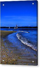 Discovery Park North Beach Acrylic Print by David Patterson