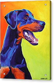 Doberman - Miracle Acrylic Print by Alicia VanNoy Call