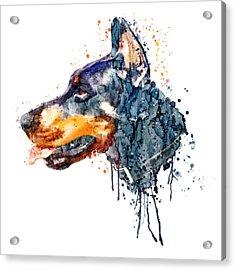 Doberman Head Acrylic Print by Marian Voicu