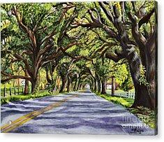 Docville Oaks Acrylic Print by Elaine Hodges