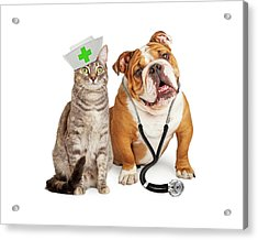 Dog And Cat Veterinarian And Nurse Acrylic Print by Susan Schmitz