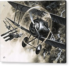 Dog Fight Between British Biplanes And A German Triplane Acrylic Print by Wilf Hardy