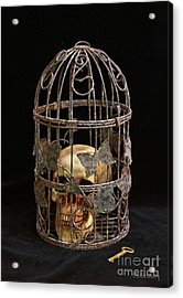 Dogmatic Enslavement Acrylic Print by Dodie Ulery