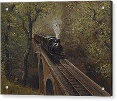 Dolgoch Viaduct Acrylic Print by Richard Picton