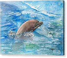 Dolphin  Acrylic Print by Arline Wagner