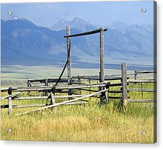 Don't Fence Me In Acrylic Print by Marty Koch