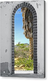 Doorway To The Desert Acrylic Print by Cheryl Young