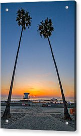 Dos Palms Acrylic Print by Peter Tellone