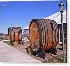 Double Barrels Acrylic Print by Marian Bell