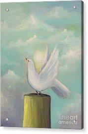 Dove Acrylic Print by Gabriela Valencia
