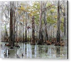 Down On The Bayou - Digital Painting Acrylic Print by Carol Groenen