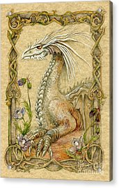 Dragon Acrylic Print by Morgan Fitzsimons