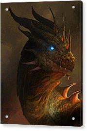 Dragon Portrait Acrylic Print by Steve Goad