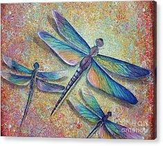 Dragonflies  Acrylic Print by Gabriela Valencia