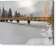 Drake Park Foot Bridge Bend Oregon Acrylic Print by John Williams