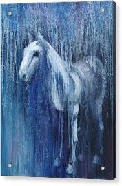 Dream Horse Acrylic Print by Katherine Huck Fernie Howard
