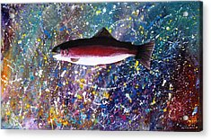 Dream Of The Rainbow Trout Acrylic Print by Lee Pantas