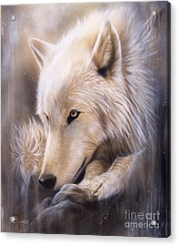 Dreamscape - Wolf Acrylic Print by Sandi Baker