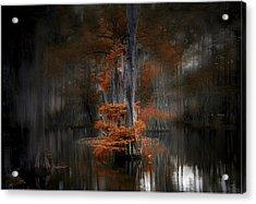 Dreamy Autumn Acrylic Print by Cecil Fuselier