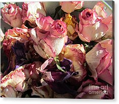 Driede Roses  Acrylic Print by Joyce Woodhouse