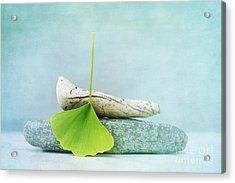 Driftwood Stones And A Gingko Leaf Acrylic Print by Priska Wettstein