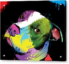 Dripful Pitbull Acrylic Print by Dean Russo