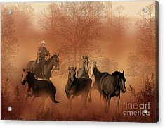 Driving The Herd Acrylic Print by Corey Ford