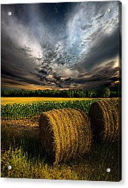 Drought Acrylic Print by Phil Koch