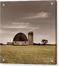 Dry Earth Crumbles Between My Fingers And I Look To The Sky For Rain Acrylic Print by Dana DiPasquale