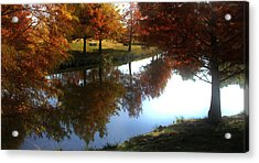 Duck Pond In The Fall Acrylic Print by Rebecca Lynn Roby