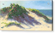 Dune Roses Acrylic Print by Barbara Hageman