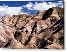 Dunes Of Arizona Acrylic Print by JT Alexander