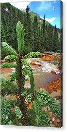 Durango Pass Acrylic Print by Skip Hunt