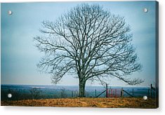Early Winter In Maine Acrylic Print by Joseph Smith