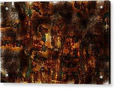 Earth Tones Acrylic Print by Frank Tschakert