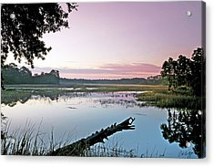 Eastern Morning Acrylic Print by Phill Doherty