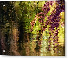 Echoes Of Monet - Cherry Blossoms Over A Pond - Brooklyn Botanic Garden Acrylic Print by Vivienne Gucwa