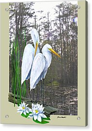 Egrets And Cypress Pond Acrylic Print by Kevin Brant