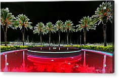 Eight Palms Drinking Wine Acrylic Print by David Lee Thompson