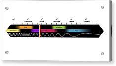 Electromagnetic Spectrum, Artwork Acrylic Print by Equinox Graphics