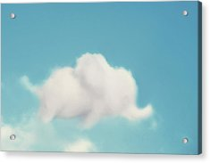 Elephant In The Sky Acrylic Print by Amy Tyler
