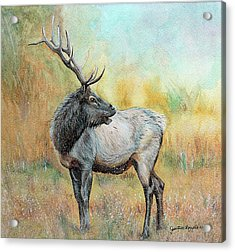 Snow Scenes In Watercolors Acrylic Print featuring the painting Elk In Winter Painting by Janet Pancho Gupta